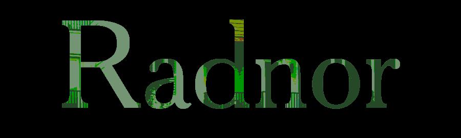 Floorplan-name-Radnor