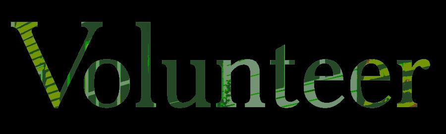Floorplan-name-Volunteer