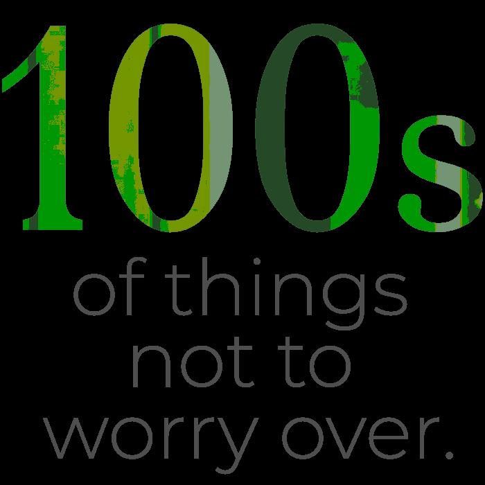 NUMEROIDs-100s